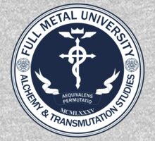 Full Metal University: Alchemy and Transmutation Studies by Chronotaku