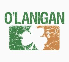 O'Lanigan Surname Irish by surnames