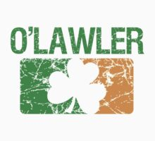 O'Lawler Surname Irish by surnames