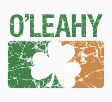 O'Leahy Surname Irish by surnames