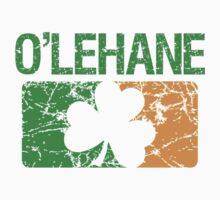 O'Lehane Surname Irish by surnames