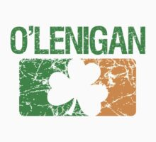 O'Lenigan Surname Irish by surnames