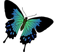 NEON BUTERFLY Photographic Print