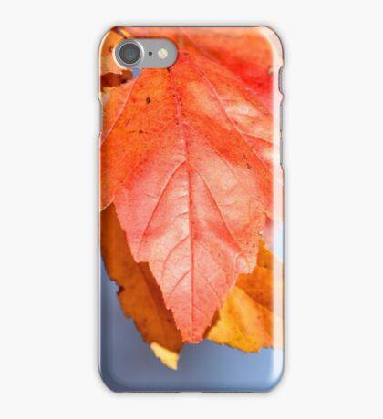 Nature's Pigment iPhone Case/Skin