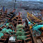 Cape Coast Fishing Canoes by Wayne King