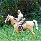 Horseback Riding by Susan S. Kline
