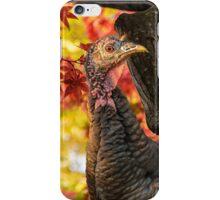 HAPPY THANKSGIVING FROM WILD TURKEY iPhone Case/Skin
