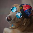 The dog's got style by emmawind