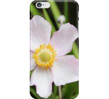 Japanese Anemone & Buds iPhone Case/Skin