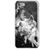 Four of Shells - Abstract Macro iPhone Case/Skin