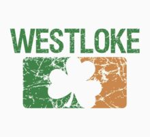 Westloke Surname Irish by surnames