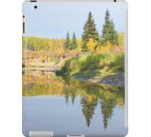 Tranquil iPad Case/Skin