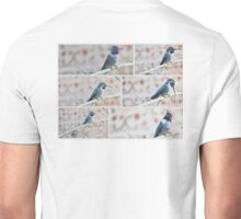 COLLAGE OF BLACK CHINNED HUMMINGBIRD Unisex T-Shirt