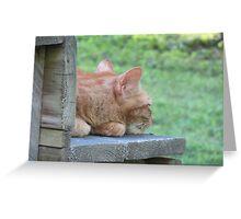Garfield Resting Greeting Card
