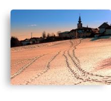 Beautiful village in winter wonderland   landscape photography Canvas Print