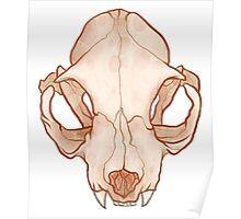 TWO Plain Skull Poster