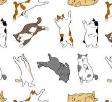 Playful Cats Sticker