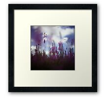 Long grass and wild flowers on summer day in Spain square medium format film analogue photography Framed Print