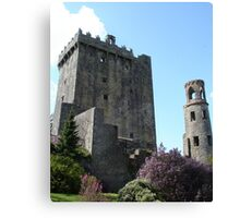 Blarney Castle 2 Canvas Print