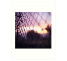 Wire fence and foliage on summer evening  in Spain square medium format film analogue photo Art Print