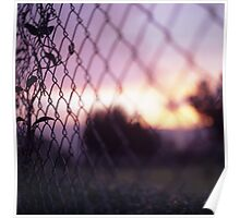 Wire fence and foliage on summer evening  in Spain square medium format film analogue photo Poster