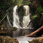 Hogarth Falls - Strahan, Tasmania by Ursula Rodgers
