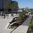 The High Line Opens Its Final Section, New York City's Elevated Garden and Park by lenspiro