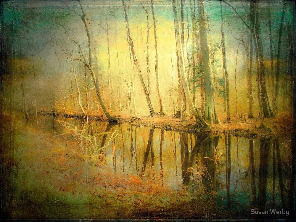 Sunshine's Music by Susan Werby