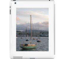 Dublin Bay iPad Case/Skin