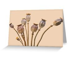 Les Poppys Greeting Card