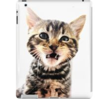 Tiny Tiger Teeth iPad Case/Skin