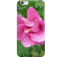Beautiful Pink Flower iPhone Case/Skin