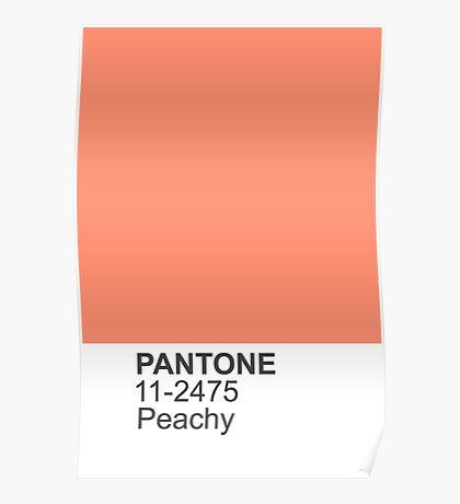 PANTONE Peachy Poster