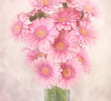 Staggered Bouquet of Pink Gerbera Daisies by carolynrauh