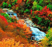 WATERFALL,GRAVEYARD FIELDS by Chuck Wickham