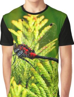 Black dragonflies with red body Graphic T-Shirt