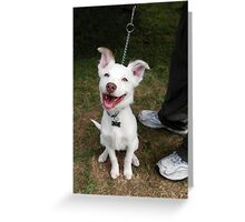 Eddie, the happiest dog in the world Greeting Card