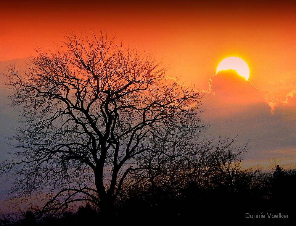 Once Upon A Sunset by Donnie Voelker