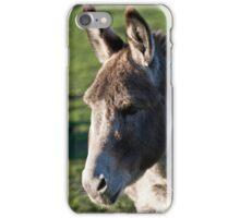 Donkeys head iPhone Case/Skin
