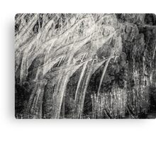 Freeze in the dark Canvas Print