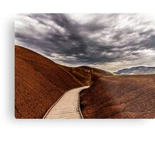 Walking the Red Hill Metal Print