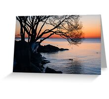 Just Before Sunrise - Bright Cold and Colorful on the Lakeshore Greeting Card