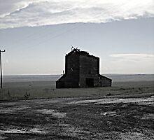 Desolation by Jennifer Bishop