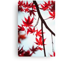 Autumn Painting in Japanese Style Canvas Print