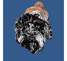 Cockapoo in a Winter Hat (Blue) Photographic Print