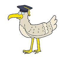 cartoon seagull with graduate cap Photographic Print