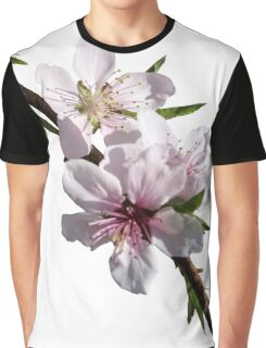 Peach Blossoms Graphic T-Shirt