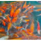 Goldfish fight for food in the ponds. Oil painting effect. by stuwdamdorp