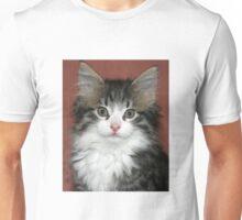 Meet Harry! Unisex T-Shirt