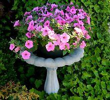 Garden Flowers - Bird Bath with Petunias by ctheworld